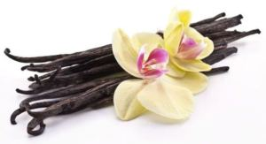 wild-vanilla-bean-powder-extract-organic-fair-trade-sinlge-origin-vanilla